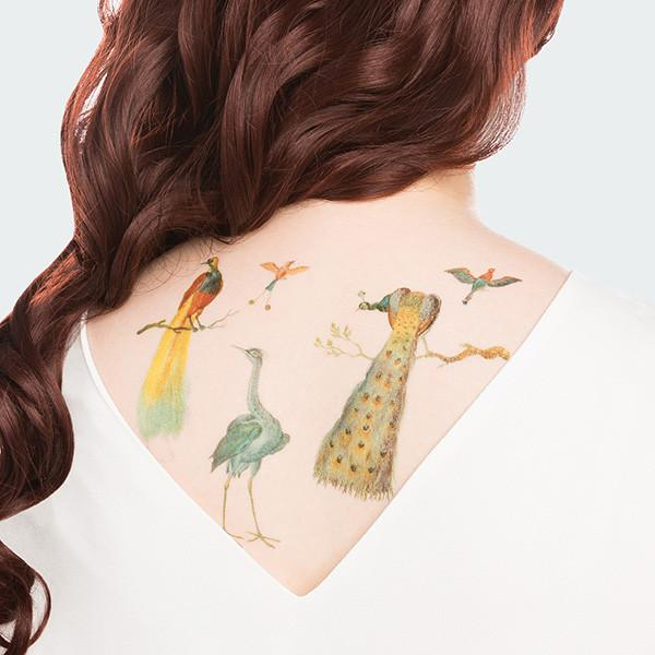 TATTLY Temporary Tattoos plumage